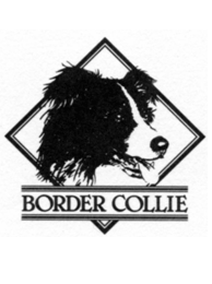 Border Collie Club Schweiz